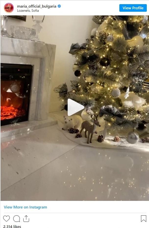Мария Коледна украса