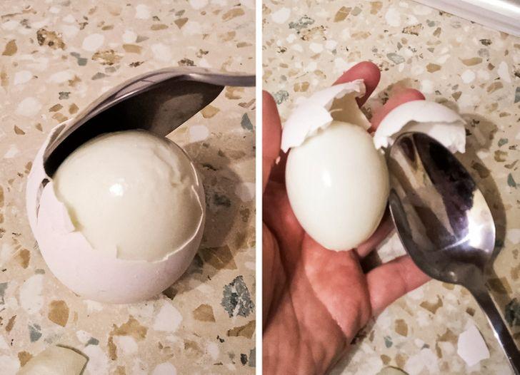 белене на яйце