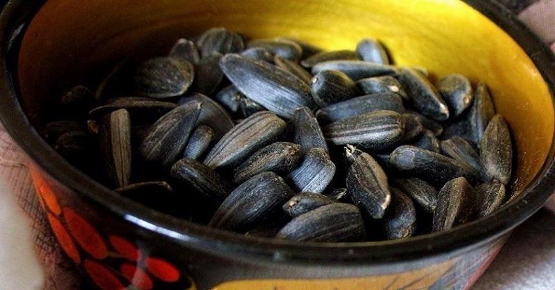 ползи от семената