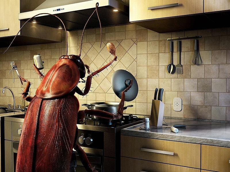 репалент срещу насекоми
