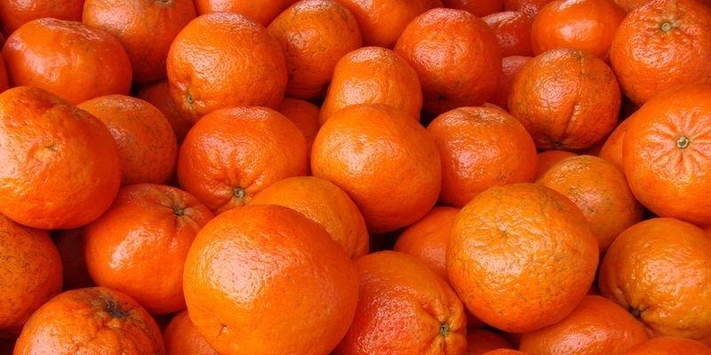 използване на мандаринените кори