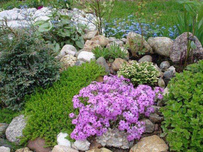 каменна градина