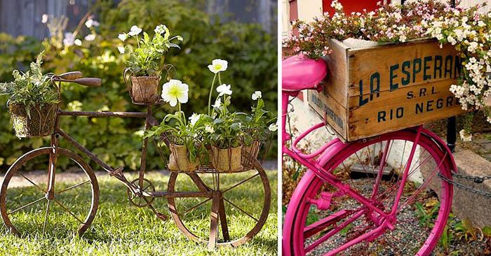 цветна леха в градината