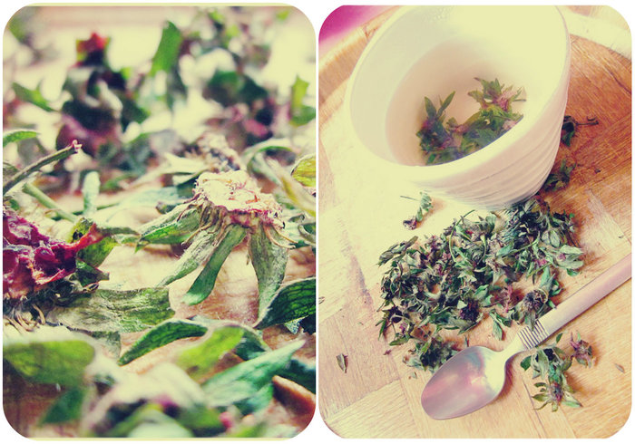 чай от ягодови опашчици