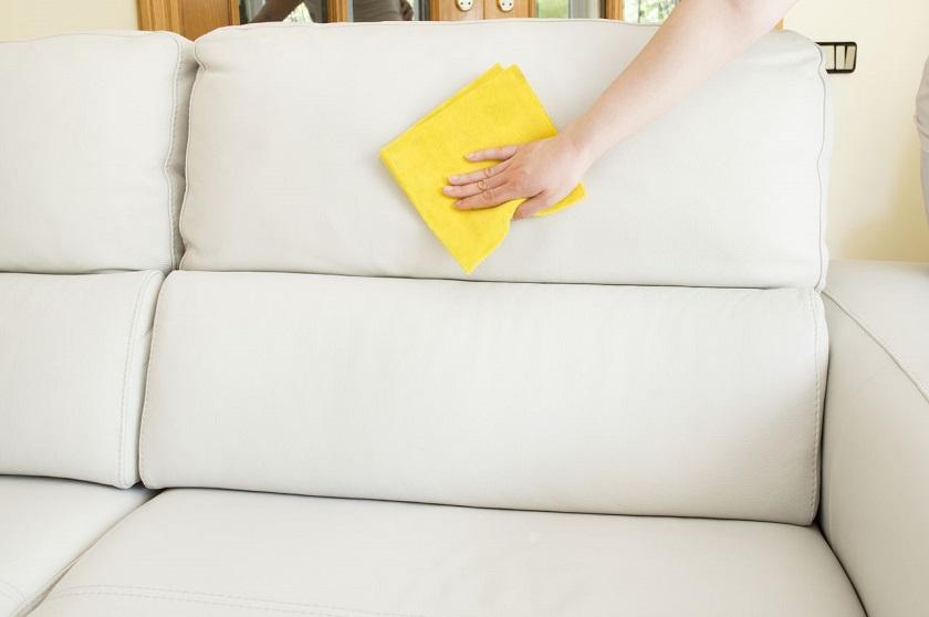 нишесте почиства мебели