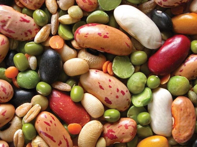 ползите от бобовите растения