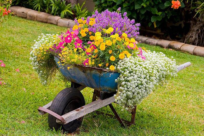 как да декорирате цветна леха в количка