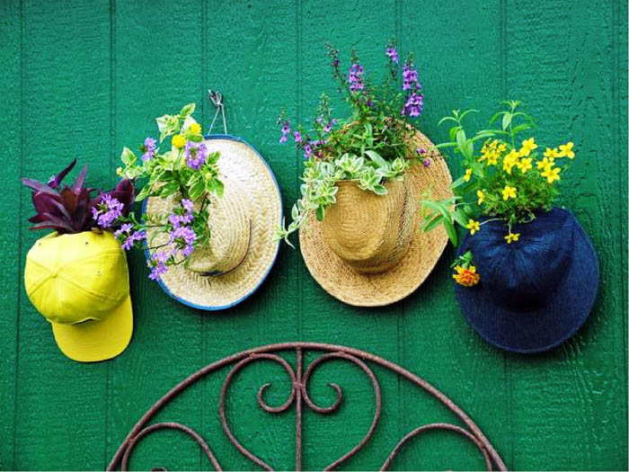 саксия от шапки