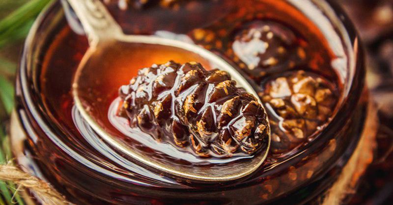 рецепта за боров мед