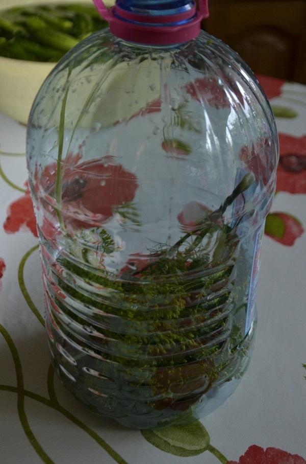 кисели краставички в бутилка