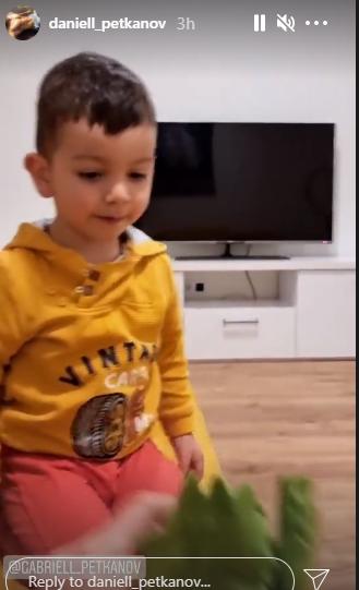 Алекс и Дани Петканови син