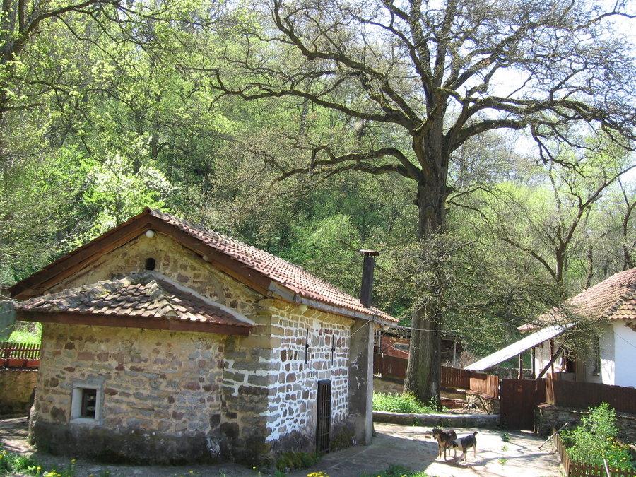 манастир с.Шума