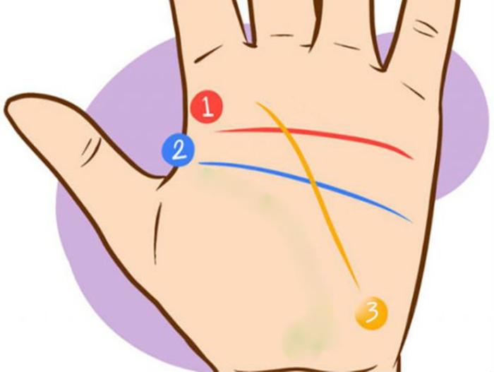 буква Н на дланта