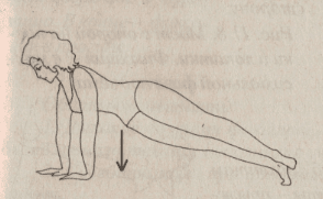 упражнение тюлен