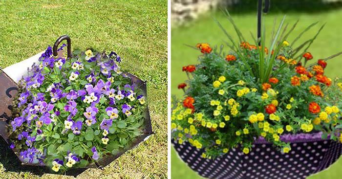 как да декорирате цветна леха в близост до къщата
