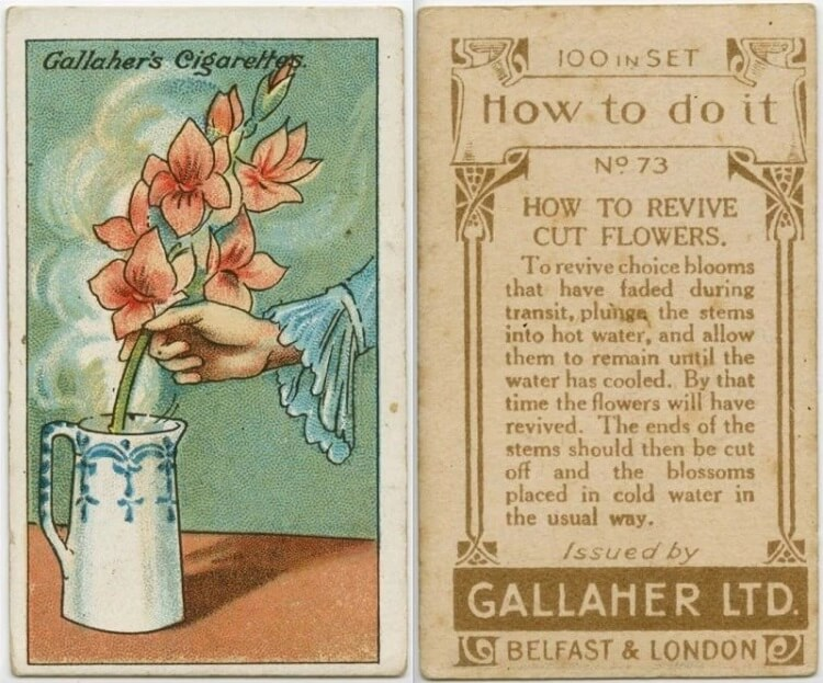 20 тематични ретро съвета преди 100 години.