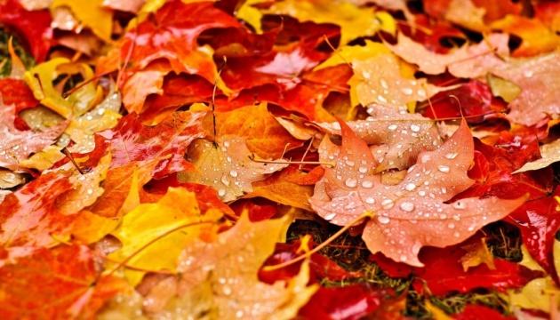 дъждовна есен