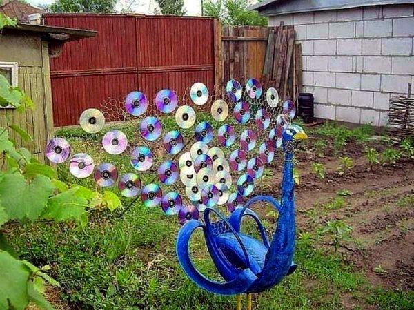 градински паун