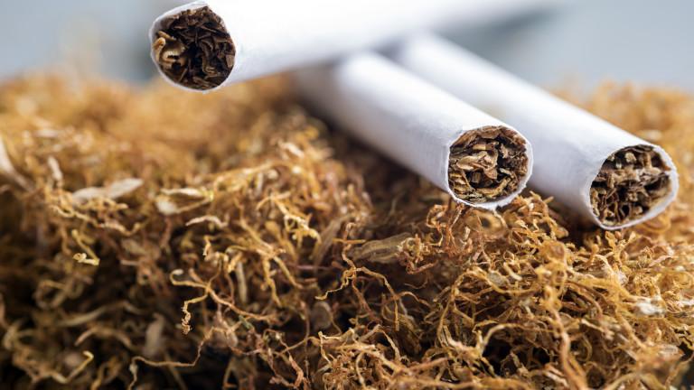 тютюн цигари