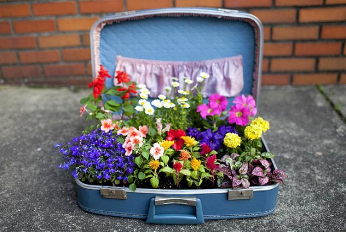 леха от куфар