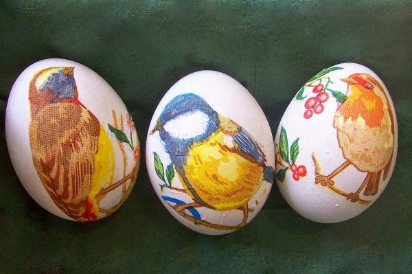 яйца с пиленца