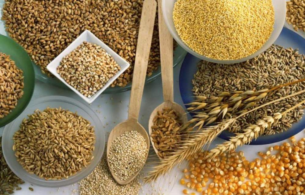 модифицирани зърнени храни