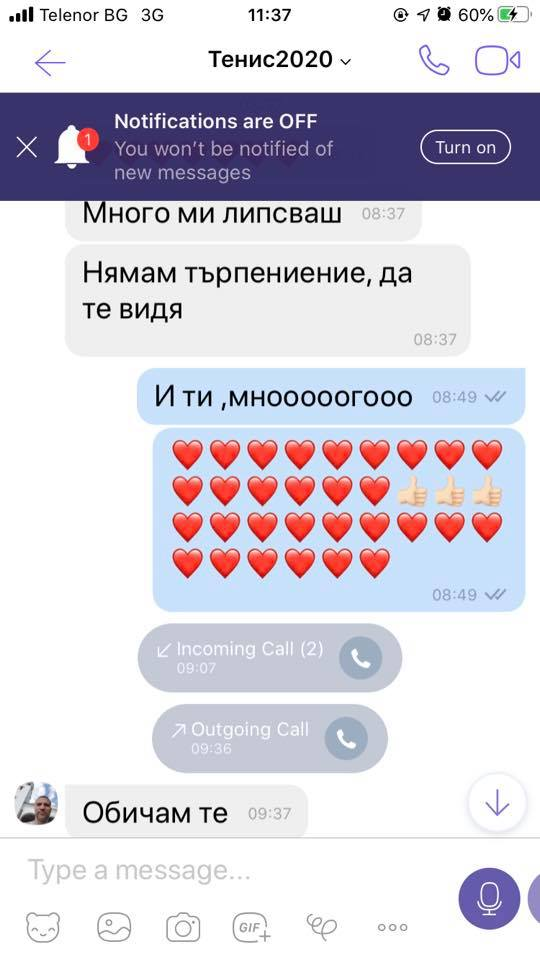 Тервел Пулев скандален чат