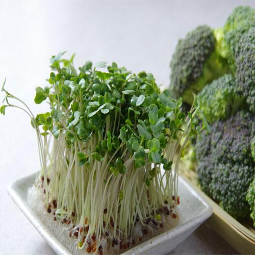 кълнове броколи
