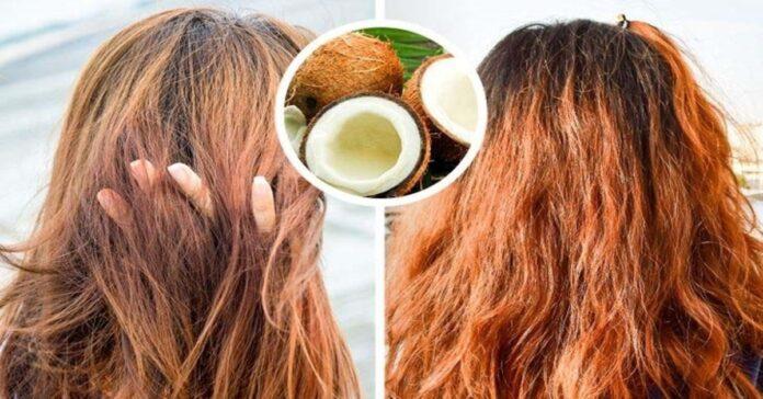 кокосово масло за косата