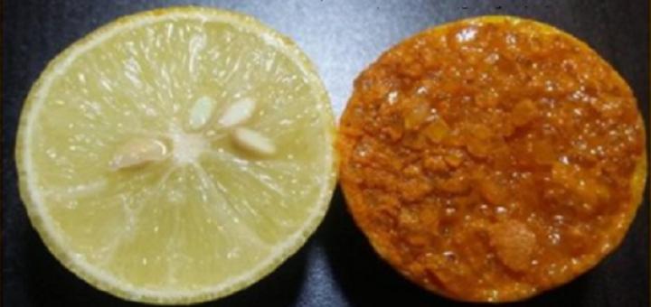 лимон с куркума
