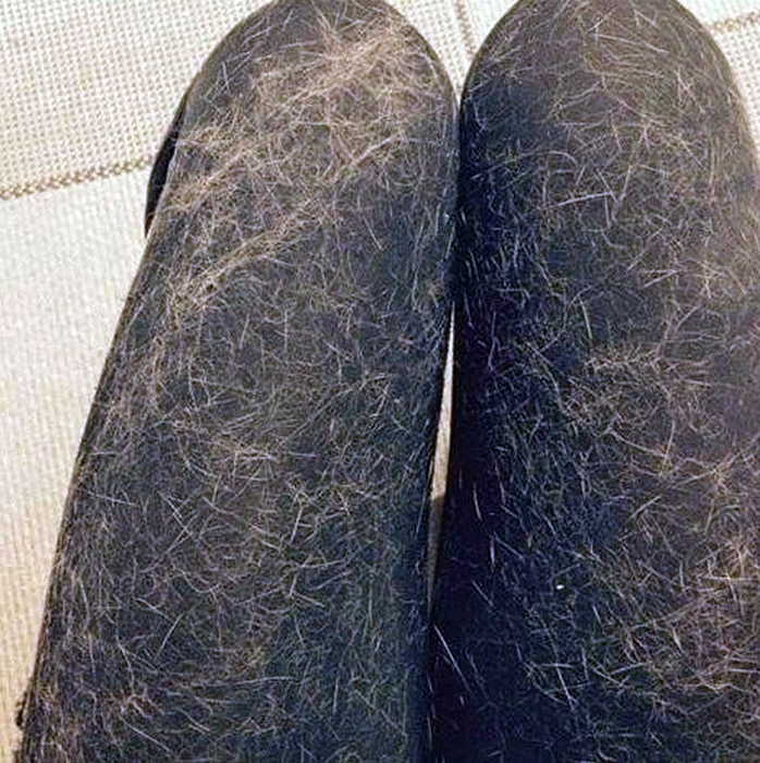 косми от животни
