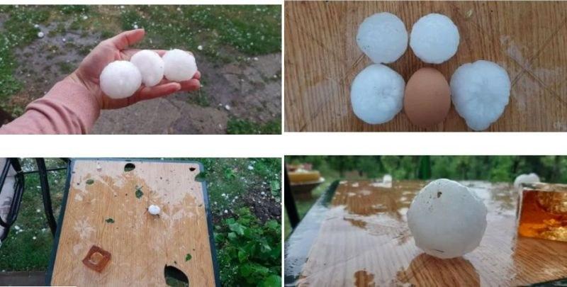 градушка яйце