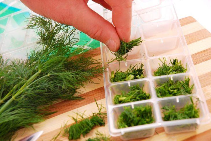 зелени подправки за зимата