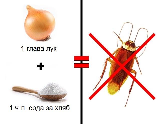 средство против хлебарки