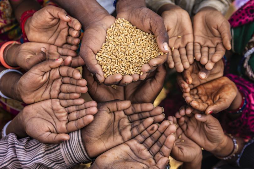 световен глад