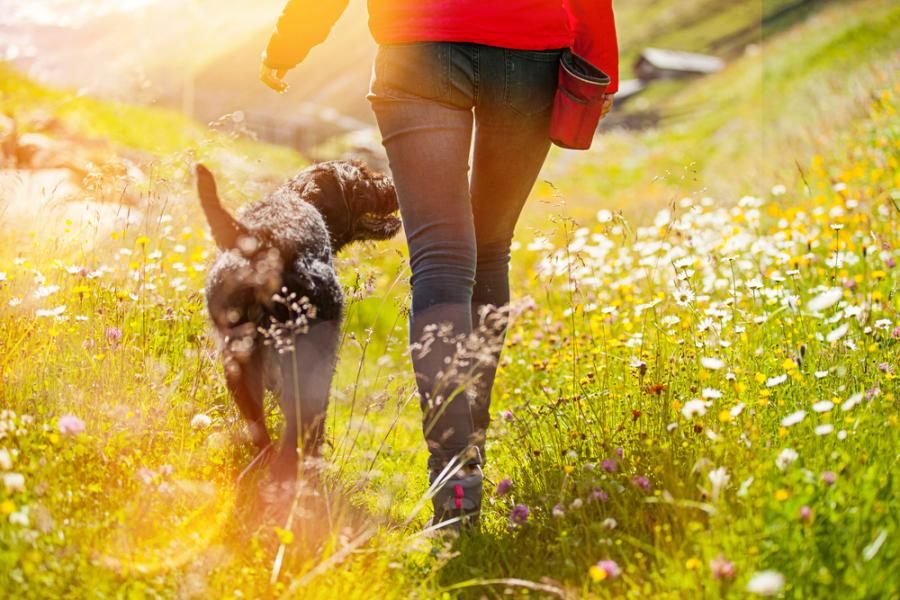 ходене пеш