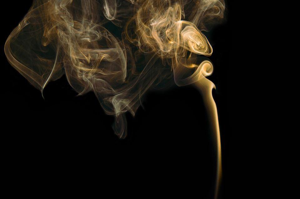 светъл пушек