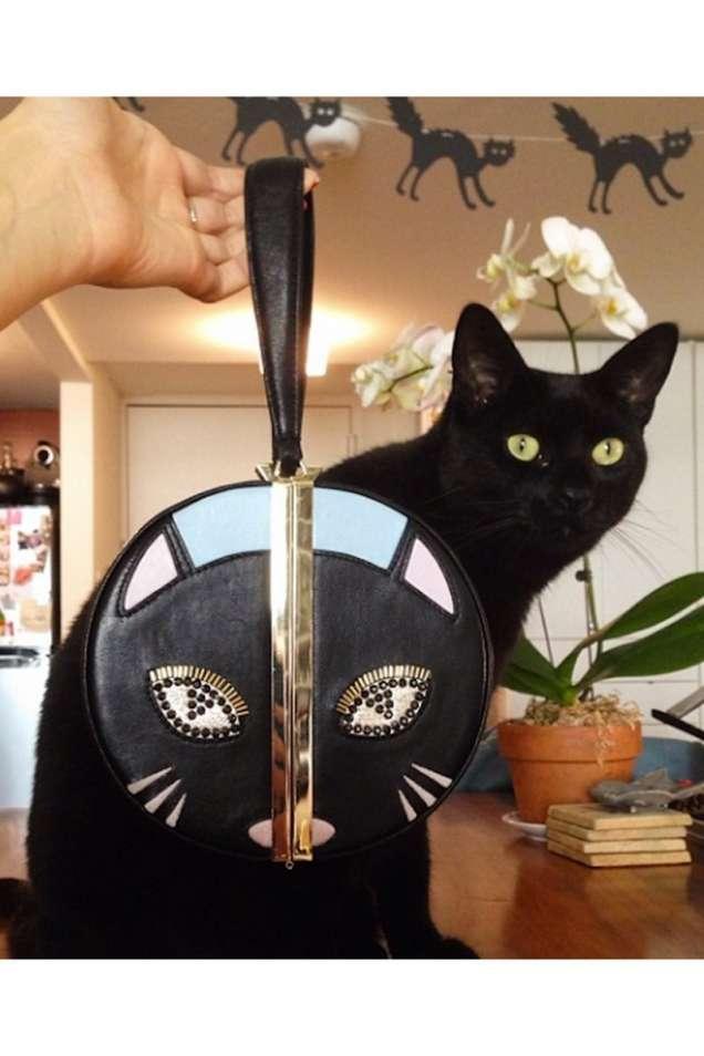 Клъч котка