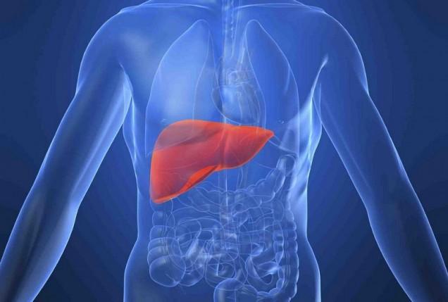 омазняване на черния дроб
