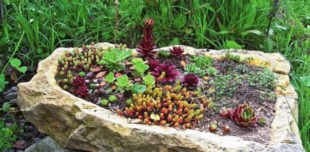 композиция с камъни и цветя