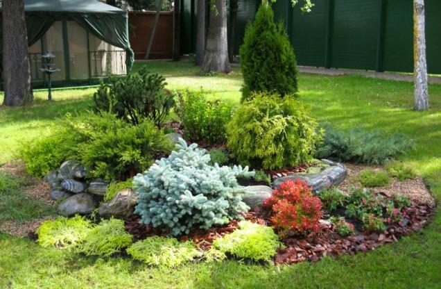 интересна идея за градината