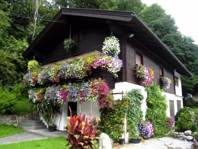 украса на фасадата с цветя