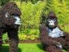 живи скулптури-маймуни