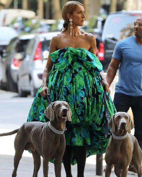 Селин Дион зелена рокля