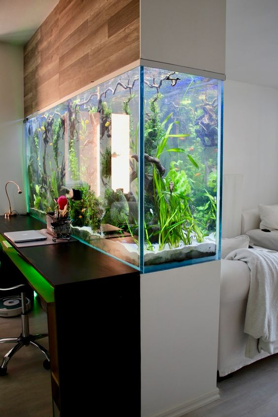 преграда-аквариум