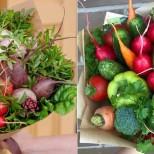зеленчуков букет