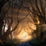 Тъмната алея, Великобритания