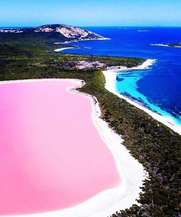 розово езеро, Австралия
