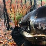 Горите от пожарите в Австралия