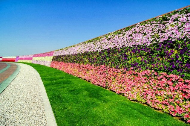 стена от цветя